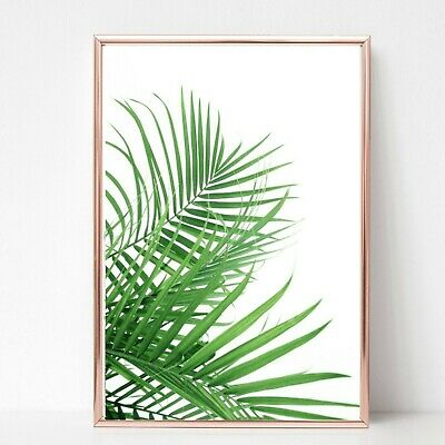palm leafs leaves print PICTURE WALL ART A4 Botanical plant UNFRAMED