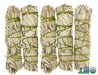 White Sage Cali Smudge Sticks SET OF 5 (Sage Bundle,House Cleansing) Made in USA