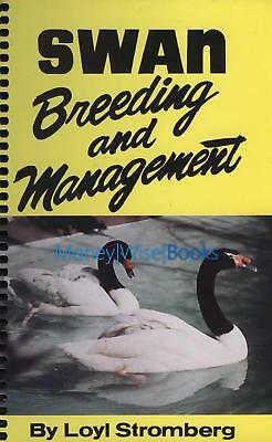 Swan Breeding and Management New Book Waterfowl Poultry