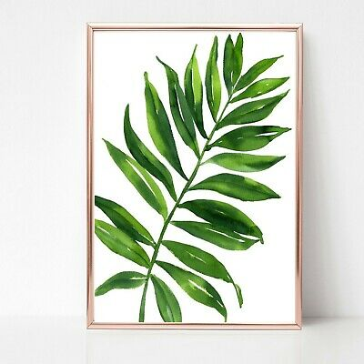 palm leafs leaves print PICTURE WALL ART A4 Botanical plant UNFRAMED 29
