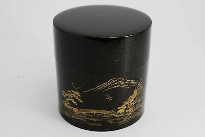 Japanese Plastic Lacquer Tea Ceremony Tea Caddy NATSUME /142