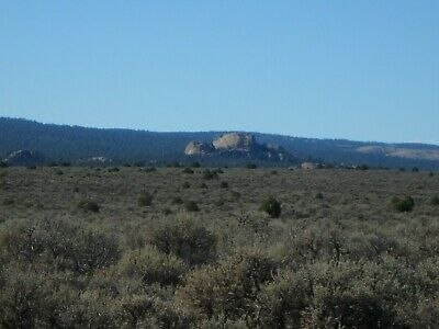 Cheapest land for sale anywhere!  Cash Sale! Half Acre In Taos County N. Mexico!