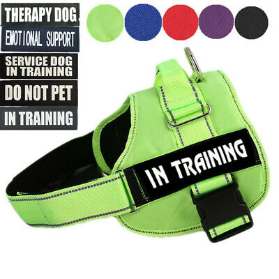 ESA Dog Harness No Pull Collar Patch Emotional Support Therapy Pet Service Vest