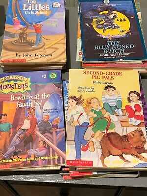 Lot of 29 Random Childrens Young Adult Chapter Books Scholastic Early Readers