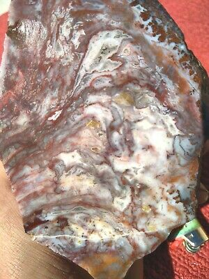 Wingate pass plume agate beautiful ! Polished OLD RARE NATURAL STONE rough 2.7