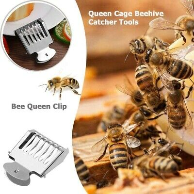 Stainless Steel Queen Bee Catcher Cage Marking Catchers Clip Apiculture Tool Y