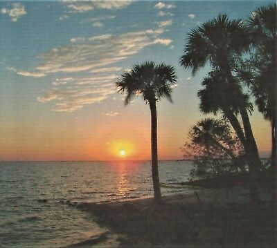 Port Charlotte, Florida  - Subdivision Lot - Minutes To The Warm Gulf Beaches