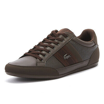 Lacoste Chaymon 419 1 Mens Brown Trainers Lace Up Casual Sport Shoes