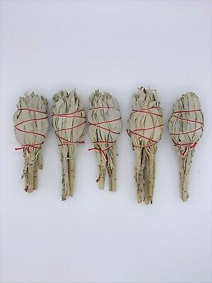 "5X Torch Style California White Sage Smudge Sticks 4"" long - Negativity Removal"