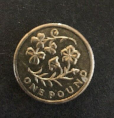 2014 £1 One Pound Coin Floral Emblems - Ireland The Flax and Shamrock ltd mintin