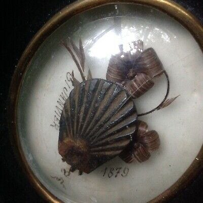 1879 Antique Victorian St James ? Shell Hair Art Picture Mourning Memento Mori