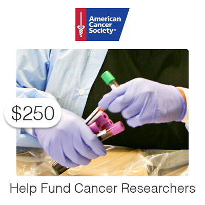 $250 Charitable Donation For: Help Fund Cancer Researchers