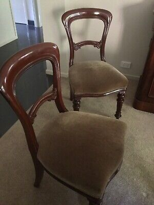 8 antique mahogany solid, well upholstered and comfortable dining chairs.