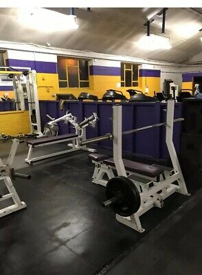 Commercial Flat / Incline Dual Olympic Bench Press