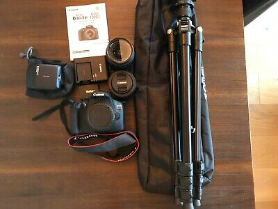 Canon EOS Rebel T6 with EFS 18-55mm and EF 50mm Macro, Bag, Charger, 2 Batteries