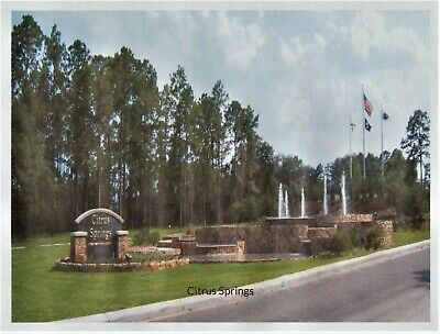 Citrus Springs, Florida  - Buildable Subdivision Lot -Golf Course Community