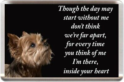 Yorkshire Terrier Fridge Magnet Yorkie Memorial Prayer (Ref Jgyt3) Dog Puppy