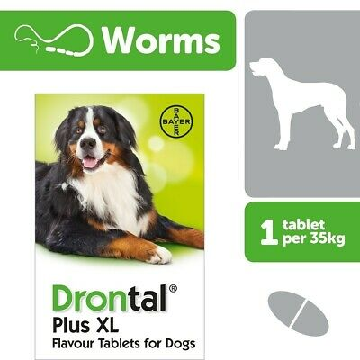 Drontal XL wormer for Large Dog allwormer 2 tabs worming. Bayer made in Germany