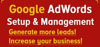 Set Up And Manage Your Google Ad Words Campaign I Will Manage Your Account