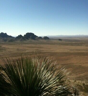Luna County NM 0.5 acre corner lot near Florida Mts & BLM, a great Xmas gift!!