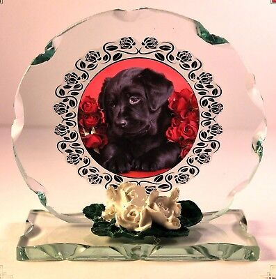 Puppy & Red Roses Photo  Glass Round Frame Creative Occasion Limited Edition #4