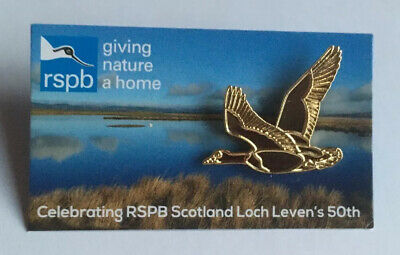 RSPB-Loch Leven (Golden )Pink Footed Goose Pin Badge(FR**)FREE POST**