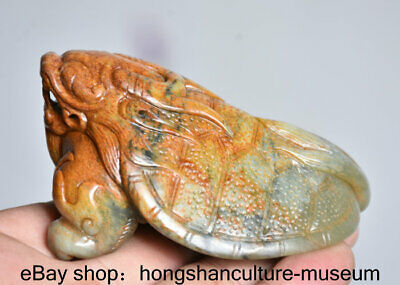 "3.4"" Hong shan Culture Old Jade Jadeite Carved Dragon tortoise turtle ""Gua jian"""