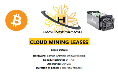 60 minutes 14TH/s Bitcoin Mining Server Lease Antminer Hashing S9 SHA256 BTC