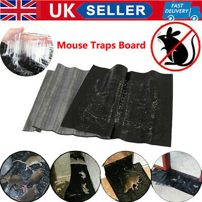 1.2M Strong Glue Mouse Catch Board Household Waterproof Mice Control Catch UK