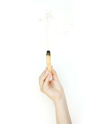 "Palo Santo Wood 1 Stick, 4"" long (Incense Smudging, Cleansing), from Peru"