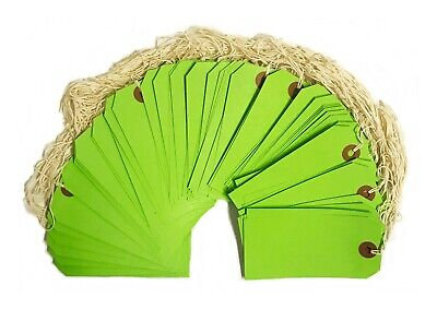 """100 Green Tags 4 3/4"""" x 2 3/8"""" Size 5 Inventory Shipping Hang Tag with String"""
