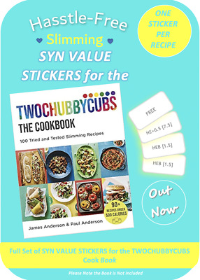 💕NEW - TWOCHUBBYCUBS  Slimming World Syn Stickers for the Cook Book 💕