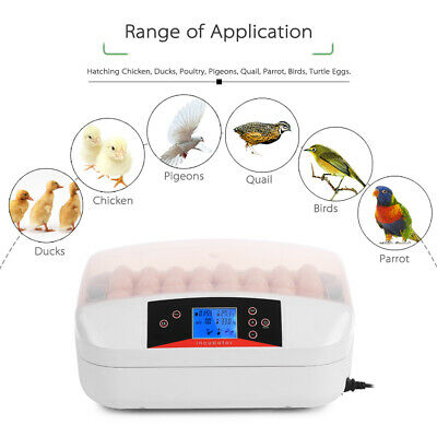 32 Egg LED Display Automatic Hatcher Egg Incubator Digital Poultry Chicken P2H0