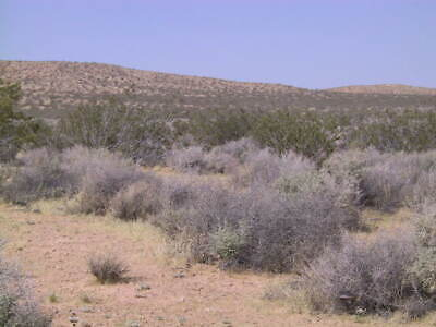 39 Acres San Bernardino County - 2 Hrs From Los Angeles Less Than $500 Per Acre