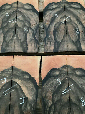 Highly figured African ebony bookmatched knife scale set cross grain cut