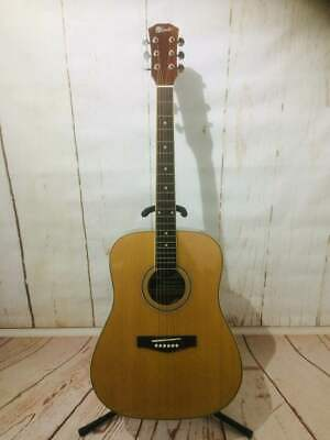 LINDO  HSSS-N Engraved Tiger head series 6 String Acoustic Guitar Mint Condition