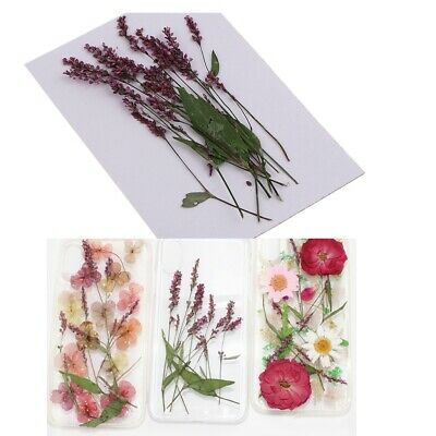 12Pcs Pressed Leaves Dried Flowers for DIY Arts Crafts Resin Jewelry Making