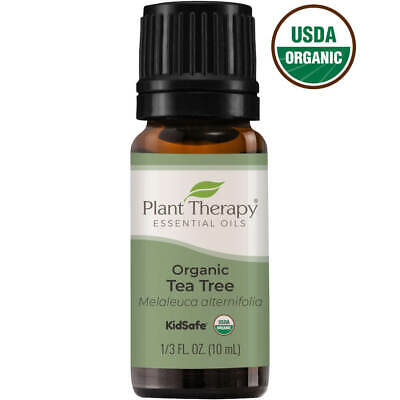 Plant Therapy Essential Oils Tea Tree USDA Organic 100% Pure, Undiluted