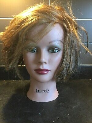 Hairart Cosmetology Mannequin Head *Preowned*