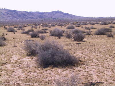 2.5 Acres In La County - East Lancaster/Palmdale - 65 Minutes From Los Angeles