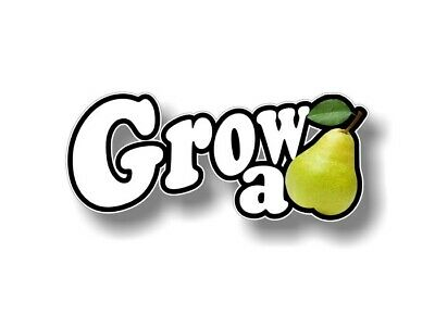 GROW A PAIR PEAR Vinyl Decal Car Sticker Window Wall JDM EURO ILLEST Street Race
