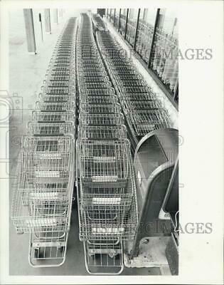 1981 Press Photo 134 grocery Carts Publix in Hernando West Plaza - RSJ04479