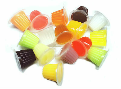 10 x Assorted Jelly Pots Treat Crested Gecko Insect Food Bearded Dragon