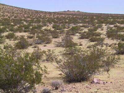 10 Acres Adjacent To California City (Kern County) - 90 Minutes From Los Angeles