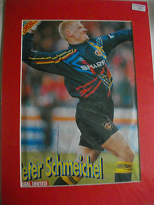 Peter Schmeichel Autographed Mounted Pic. Manchester Utd