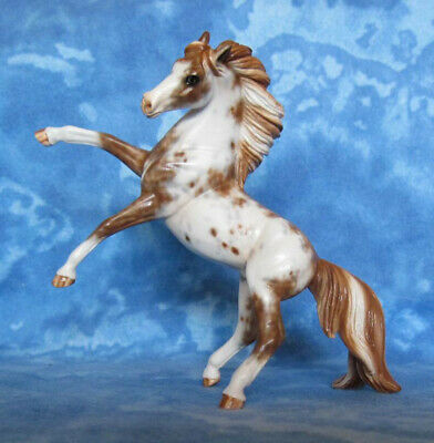 Custom Breyer Rearing Andalusian Stablemate to Paint/ Pinto by Burd, Brand New!
