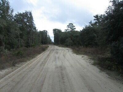 Bronson, Florida 2.5 Acres, Utilities, Owner Finance/Cash Discount Florida Land
