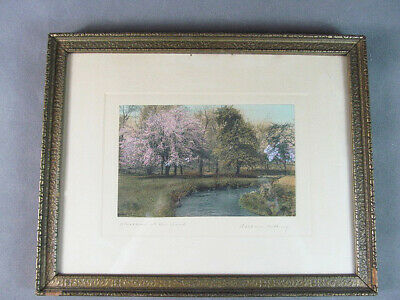 "WALLACE NUTTING Hand Colored PHOTOGRAPH  ""Blossoms at the Bend"" Signed"