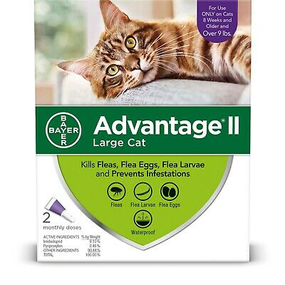 Bayer Advantage II for Large Cats 9 lbs & up - 6 Pack