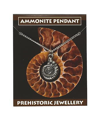 Unisex Ammonite Pendant Pewter - Stunning Necklace - Gift For Fossil Lovers